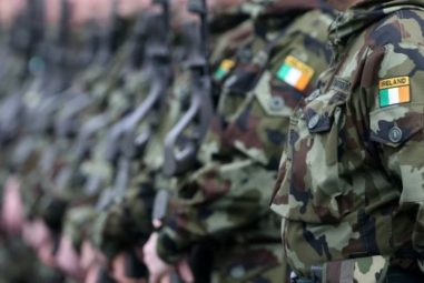 Dr. Cathal Berry – Issues affecting the Defence Forces
